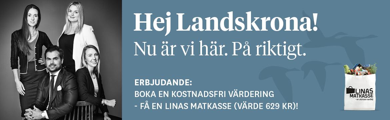 hitta sex Landskrona